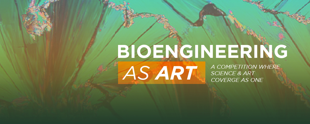 Bioengineering as Art